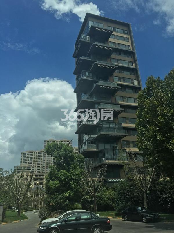 绿地西水东中央生活区高层实景图(2017.10 摄)