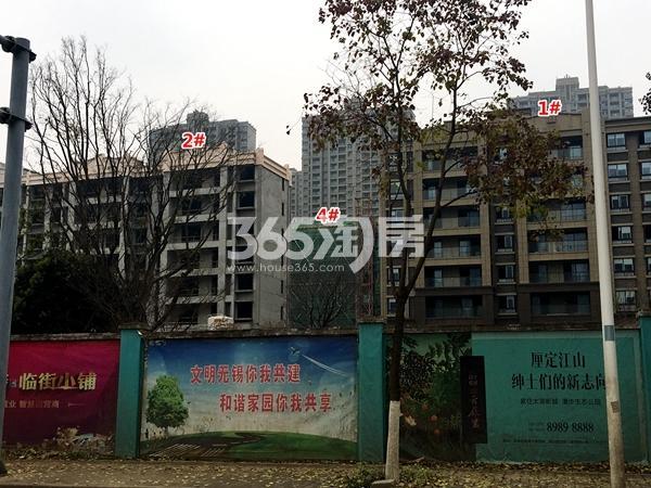 苏宁悦城四期1#、2#、4#楼洋房工程实景(2017.11摄)