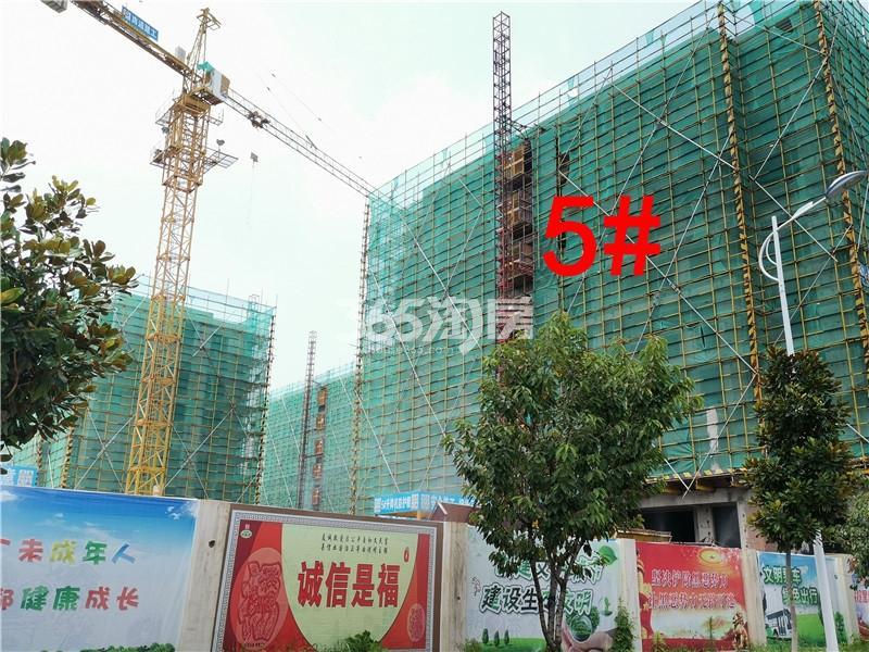 蓝城蘭园在建5#楼实景图(7.26)