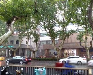 鼓楼广场附近1至3层商铺门头宽位置好房源真适合各种经营