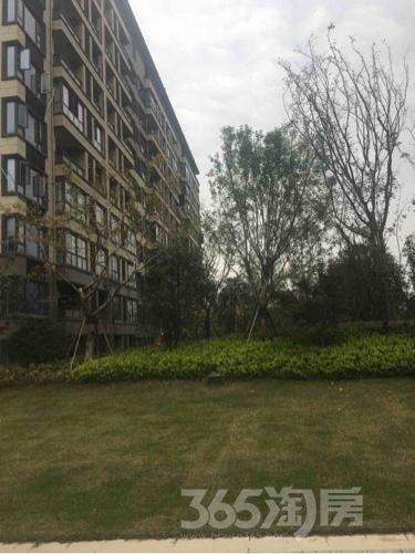 万悦城3室2厅2卫105平米毛坯产权房2016年建