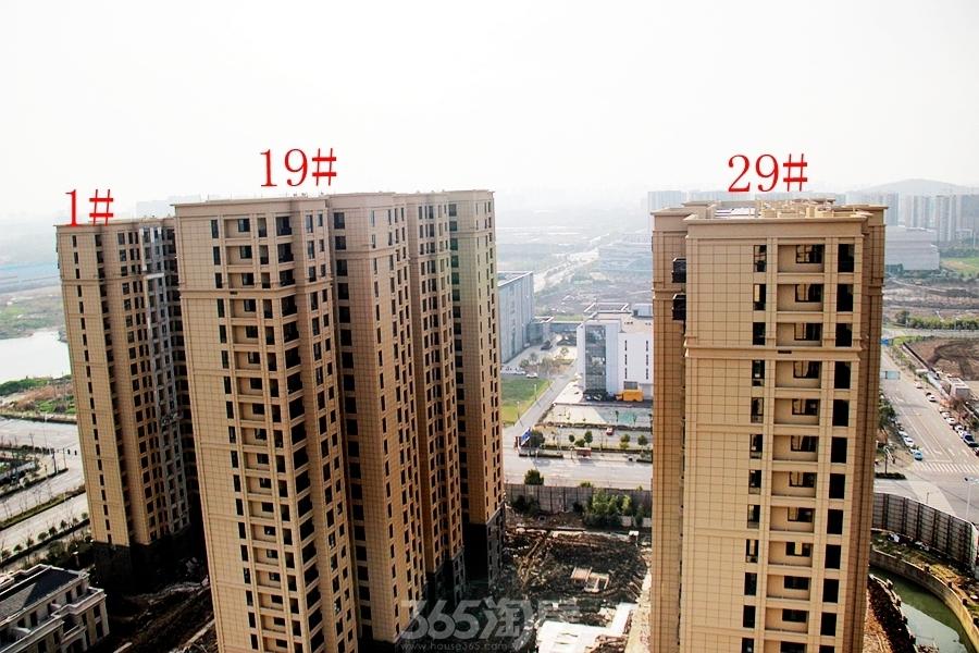 柏庄香府1#、19#、29#楼均已封顶(2018.3摄)