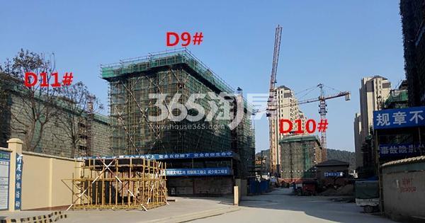 国基逸境9、10、11#楼洋房在建实景图(3.14)