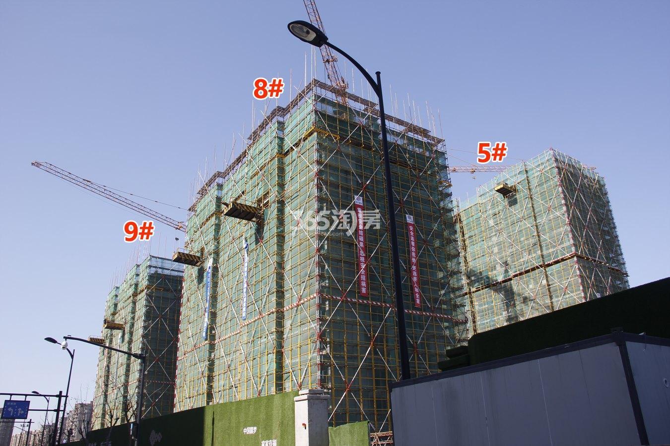 绿都汀蘭府5、8、9号楼施工进度实景图 2018年1月摄