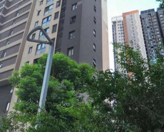 港澳广场安医二附院对面融科城南阳台大主卧个人包物业宽带月付