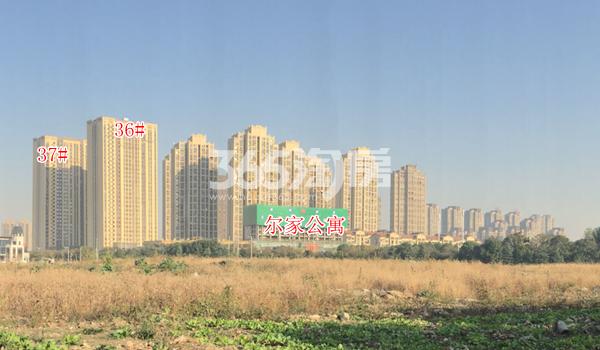 金科米兰尔家公寓项目实景(2017.12)