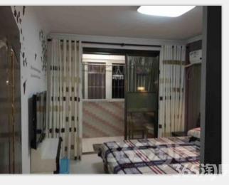 凤栖苑 湖西街 南湖 精装两房 拎包入住 首次出租 全新家