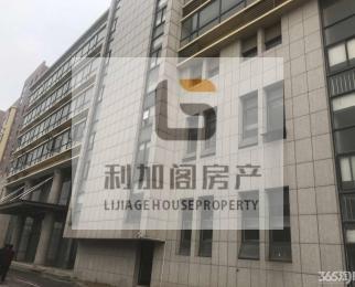 九龙湖产业园大面积出租