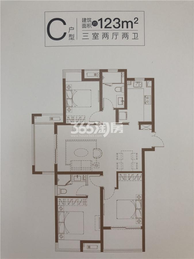 中国铁建青秀城C户型123㎡