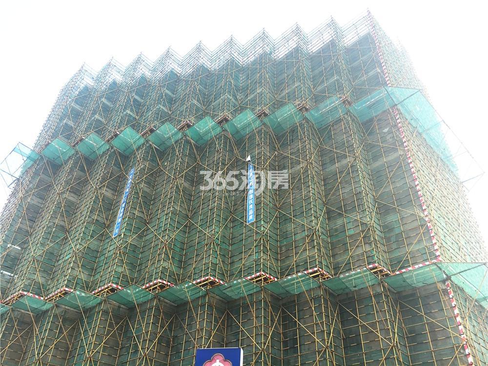 武夷凌云公馆工程进展(1.18)
