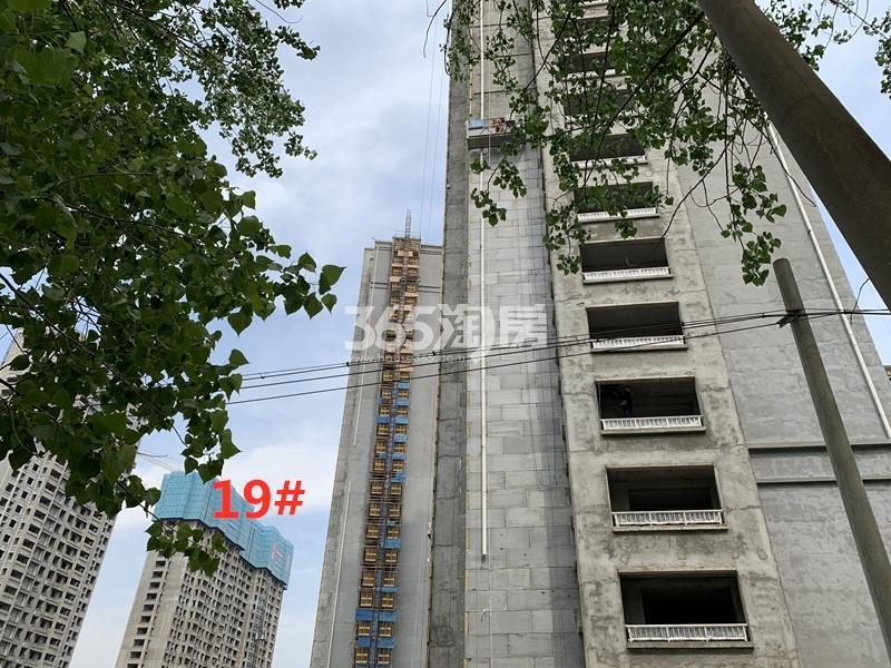 港利上城国际19#实景图(4.22)