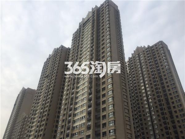 金隅紫京府实景图(11.21)