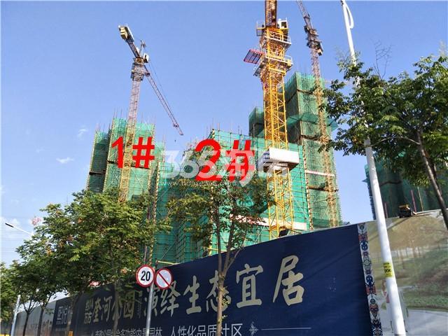 珍宝岛熙悦府1、2#楼实景图(9.25)