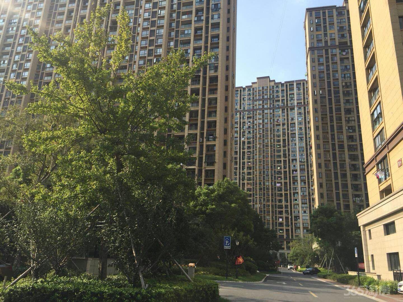 临平万宝城旁边现房住宅,不用摇号,投资自住最佳选择,随时选购