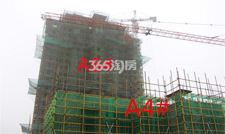 东方樾府A8#A4#工程进度实景图(10.30)
