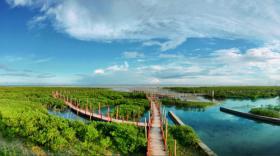 彰泰红树湾 为您倾心打造的健康王国