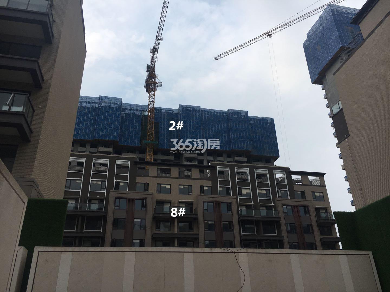 悦风华2、8号楼叠墅实景图(9.26)