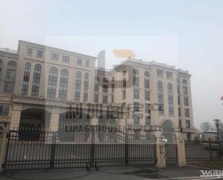 九龙湖科技园 250与480平方可分割0.9元天含税随时好看