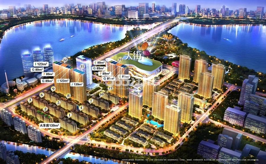龙湖江与城鸟瞰图