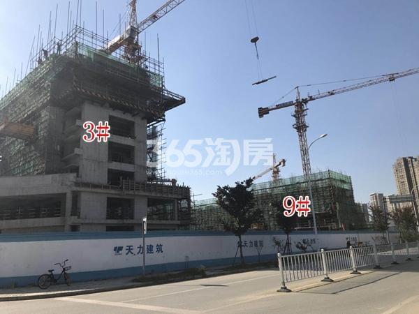 富力运河十号小高层3#、9#楼实景图(2017.10 摄)