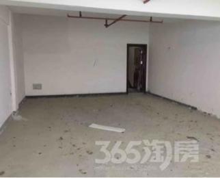 碧桂园欧洲2街5栋4号4室2厅3卫253平米整租毛坯