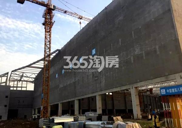 无锡万达城水乐园东侧外墙工程进度实景图(2017.10摄)