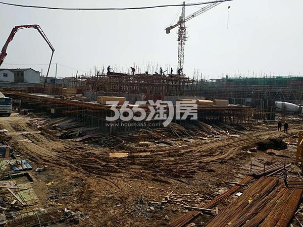 枫林学府洋房在做基建实景图(3.20)