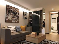 江北新区 星悦城 4.8米挑高公寓 双钥匙 三号线星火路200米 投资