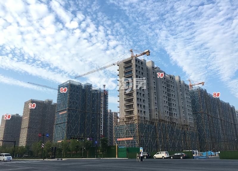 阳光城未来悦2、3、6-8号楼施工进程图(2018.9)