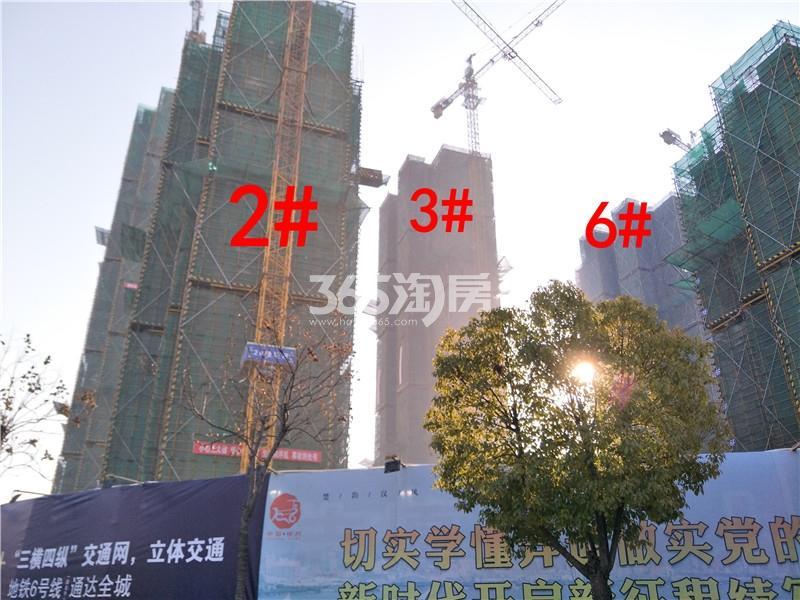 珍宝岛熙悦府2、3、6#楼工地实景图(1.24)