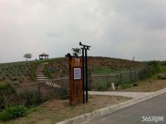 江宁区科学园东渡国际青年城