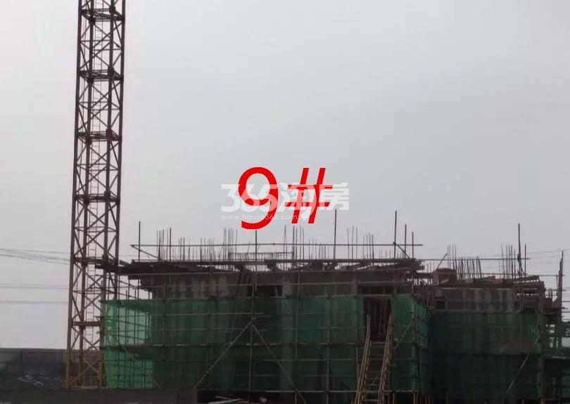 新城悦隽九里实景图