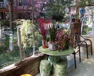 花园洋房 · 竞地溯源居