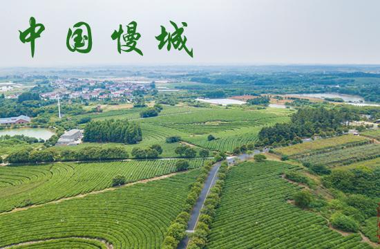 """光影石城360:中国第一个""""慢城"""""""