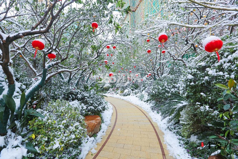2018年1月首开杭州金茂府示范区雪景