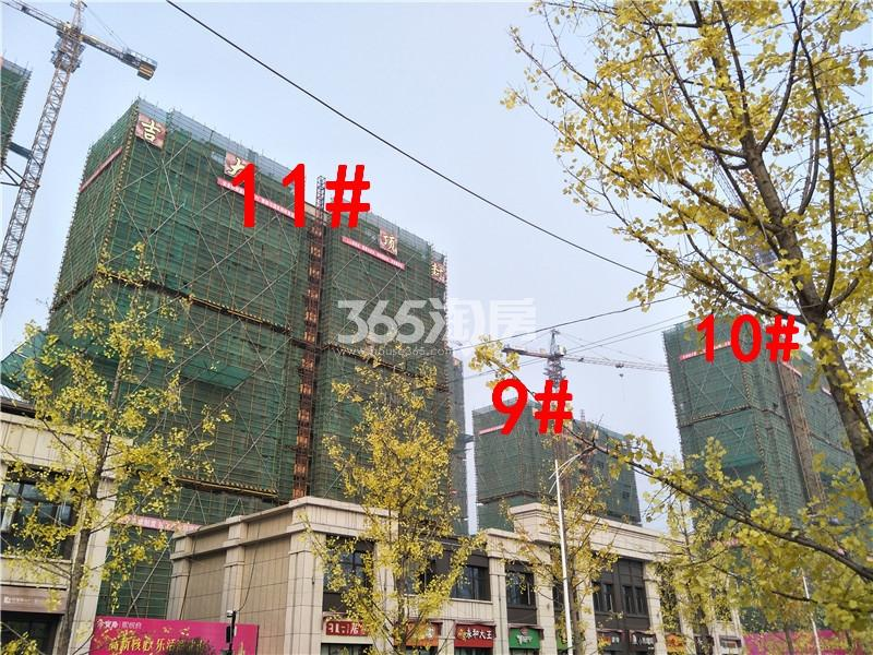 珍宝岛熙悦府在建9、10、11#楼实景图(11.29)