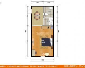 恒基中心国际公寓1室1厅1卫45�O2005年产权房精装