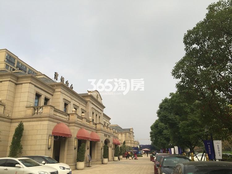 翠屏诚园项目周边实景图(11.23)