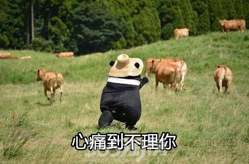 (心痛 365淘房 资讯中心)