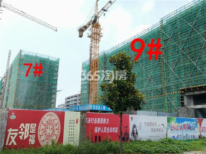 蓝城蘭园在建9、7#楼实景图(7.26)