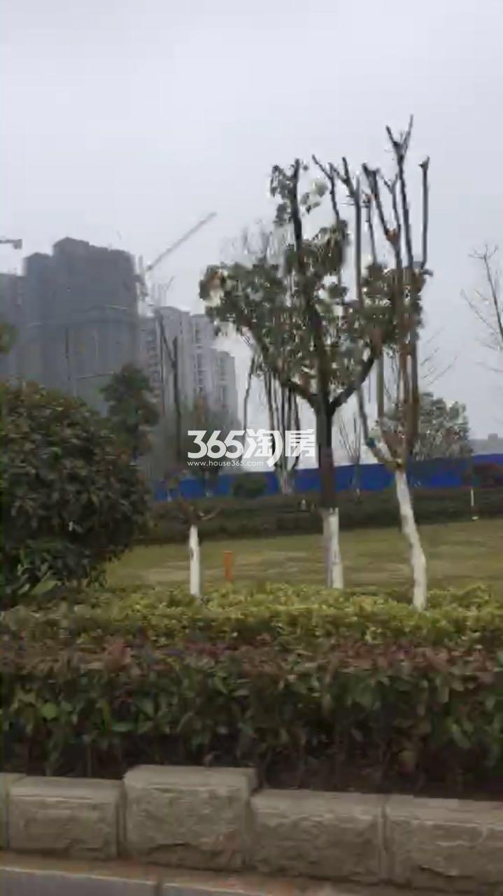 江山薈实景图(2.23)