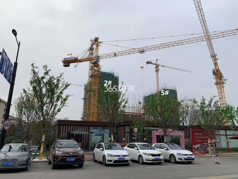 雅居乐雅尊府2、5号楼实景图(12.30)