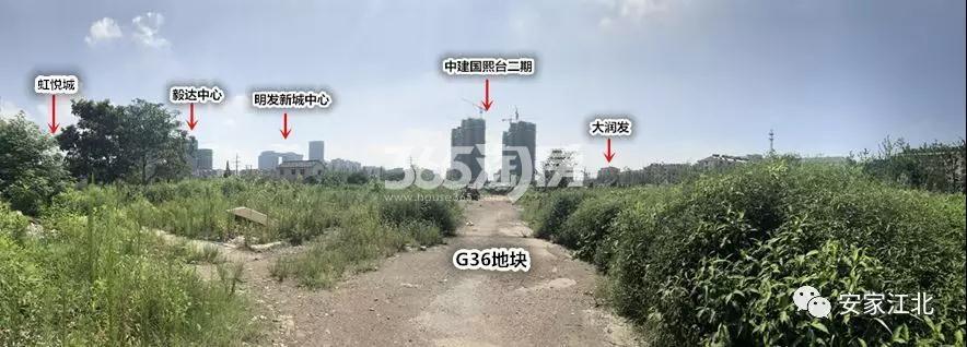 雅居乐江浦G36地块实景图(8.15)