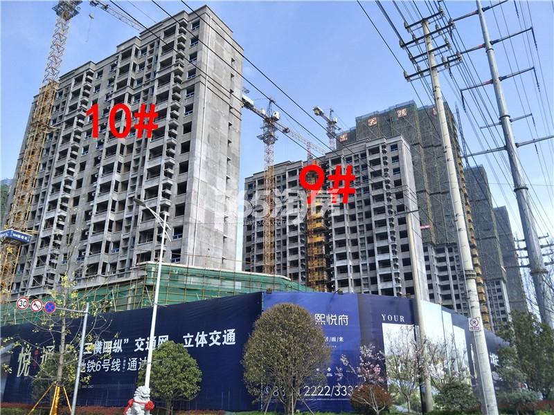 珍宝岛熙悦府9、10#楼项目工实景图(3.29)
