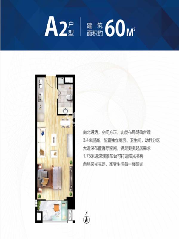 天洋国际公寓 A2 一室一厅 60㎡