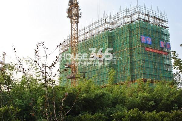 苏宁悦城三期6#楼实景图(2015.10摄)