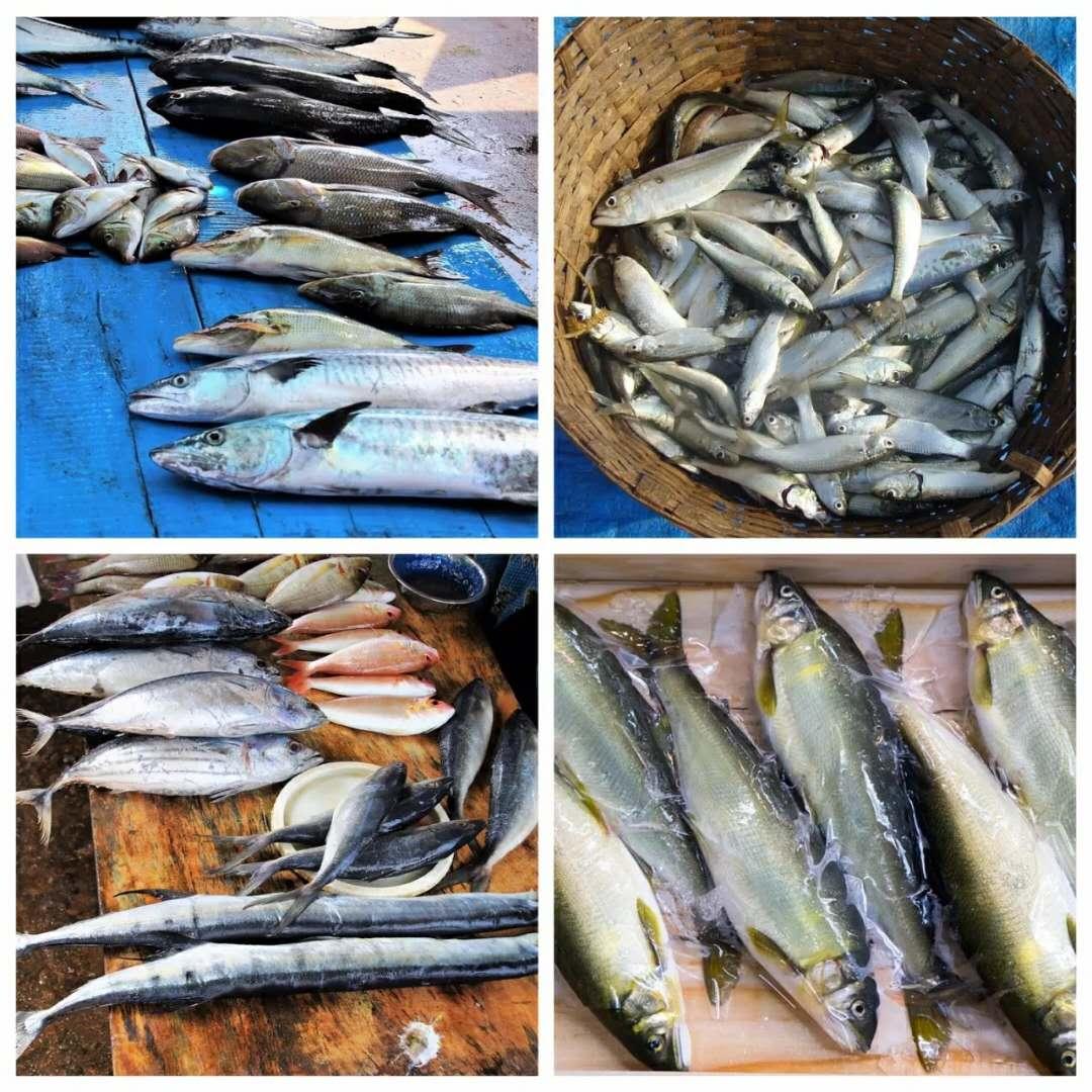 开海啦!北海哪里的海鲜新鲜又实惠?