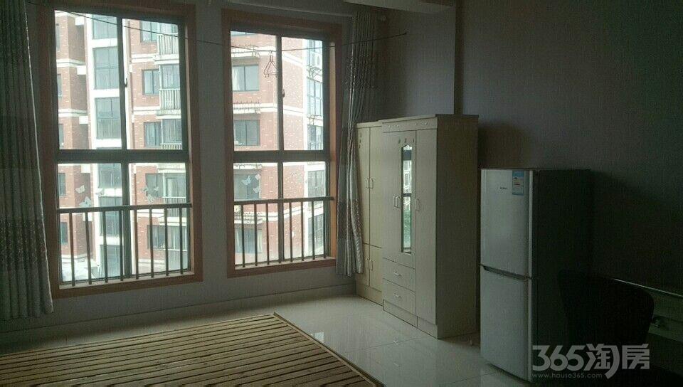 银湖华庭1室1厅1卫47平米整租精装