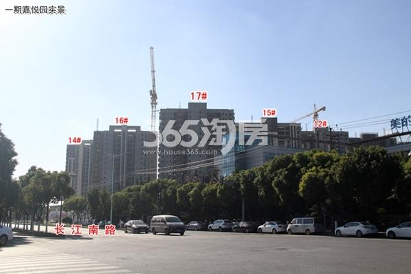 正大·万物城一期沿长江南路一侧实景(2017.11)