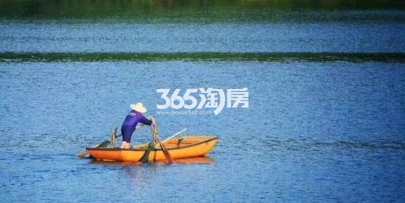 瑞安翠湖山湖景(9.5)